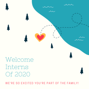 Welcome Interns of 2020