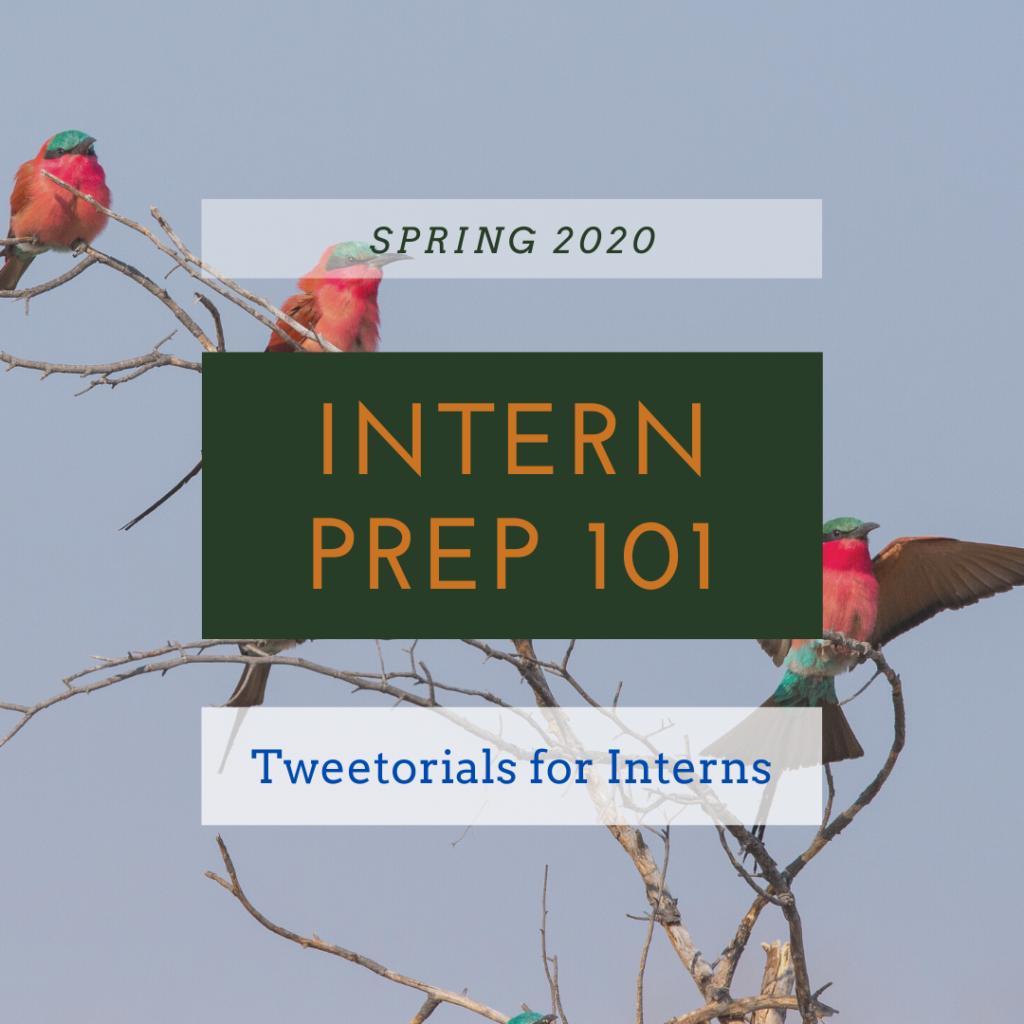 Tweetorials for Interns